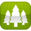 Standard trees4