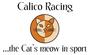 Display race49555 logo.bzznzi