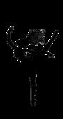 Display race38676 logo.bxx69o