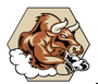 Display race58378 logo.bfz9zt