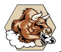 Standard race58378 logo.bfz9zt