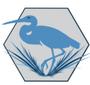 Display race67741 logo.bfmgqe