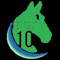 Standard race51102 logo.bdirhe