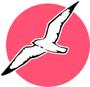 Display race72594 logo.bcawgr