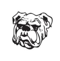 Standard race64398 logo.bbvips