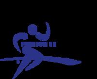 Standard race46334 logo.bc8t5e