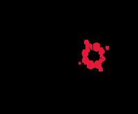 Standard race81554 logo.bfdshe
