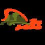 Display race59820 logo.batp