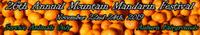 Standard race66149 logo.bdpkx