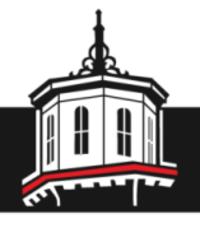 Standard race13857 logo.bcer2z