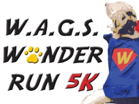 Standard race60168 logo.bcyjkn
