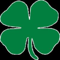 Standard race84971 logo.bef0f0
