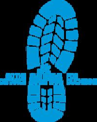 Standard race29356 logo.bc v7d
