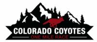 Standard race58974 logo.baqzsj