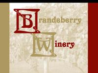 Standard race85599 logo.beiwlp