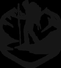 Standard race85630 logo.bejm0h