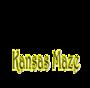 Display race75024 logo.bcscqx