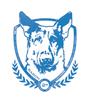 Display race86230 logo.bemgbk