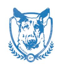 Standard race86230 logo.bemgbk