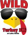 Display race73879 logo.bcmod6