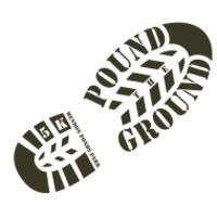 Standard race34392 logo.betu0f