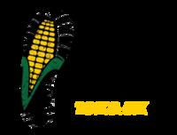 Standard race66857 logo.bcooh8