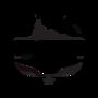 Display race36487 logo.beytrr