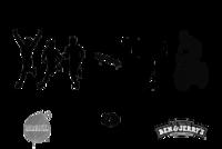 Standard race16343 logo.belyh9