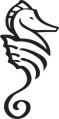 Standard race37530 logo.bxmedg