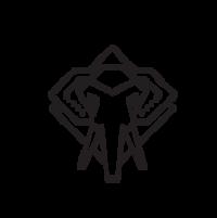 Standard race63475 logo.beg3ng