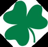 Standard race57791 logo.bcaesd