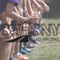 Standard race87316 logo.beswty