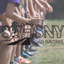 Display race87448 logo.betevo