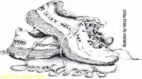 Standard race15481 logo.bu3m7i