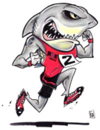 Standard race87595 logo.betvct