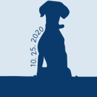 Standard race62943 logo.beogib