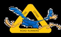 Standard race35029 logo.bxt1jy