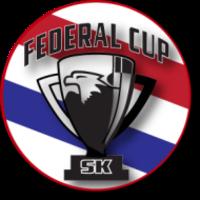 Standard race78250 logo.bgvboi