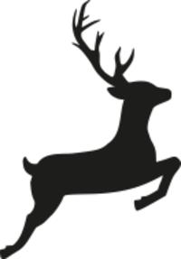 Standard race81126 logo.bdmmku