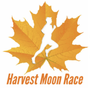 Display race95329 logo.bffn0y
