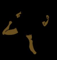 Standard race99012 logo.bfxabg