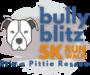 Display race114232 logo.bg2xmq