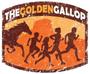 Display race105394 logo.bgrwh