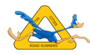 Display race115744 logo.bg hk1