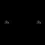 Display race119114 logo.bhspag