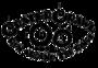 Display race119738 logo.bhwgbh