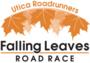 Display race22309 logo.bvgwin