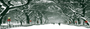 Display race39762 logo.bhzfe1