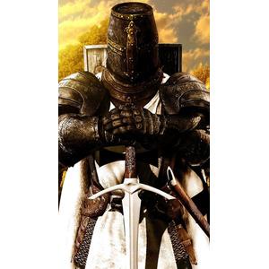 Large templar knight 036e00ee 222b 3202 9730 33e70ffff159